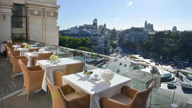 Restaurante Palacio De Cibeles En Madrid Thefork Antes
