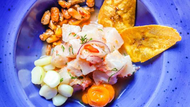 Ceviche - Inkanto - Autentica Cucina Peruviana, Milan