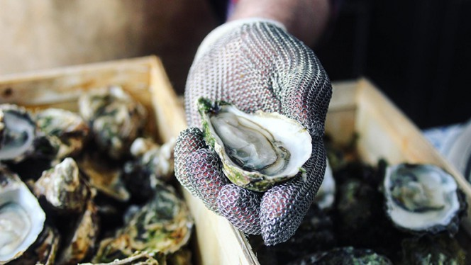 Vis / Oesters / Oysters - JP Oyster Bar, Amsterdam