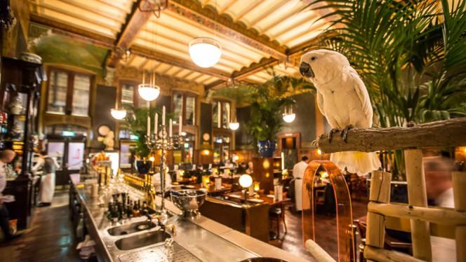 Elvis de Kakkatoe - Grand Café-Restaurant 1e klas, Amsterdam