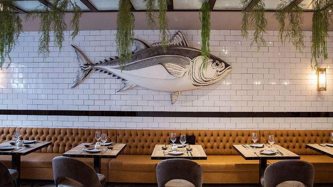 local - The Tuna house, Madrid
