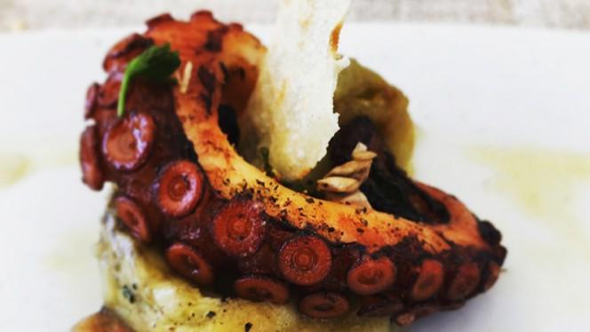 Suggerimento dello chef - Sapori di Mare, Anzio