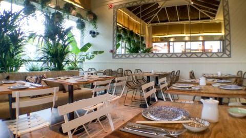 Sushita Café - Parque Sur, Leganés