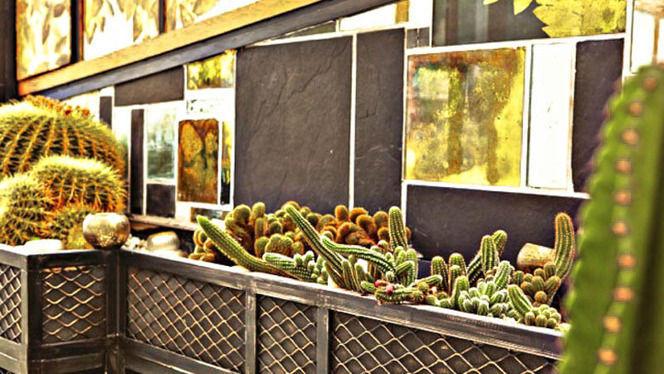 Cactus - La Nouvelle Seine, Paris