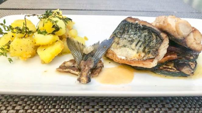 Sugestão prato - Cozinha Cabral, Porto