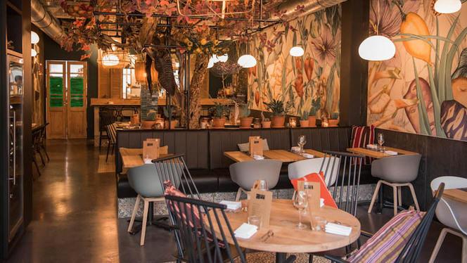 Restaurant - Ají, Rotterdam