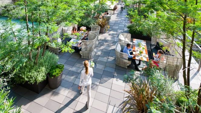 Terraza - Jardin Mimosa - Mandarin Oriental Barcelona, Barcelona