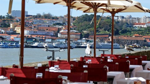 D. Tonho Porto, Porto