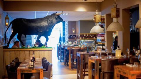 Vaca Negra, Zwolle