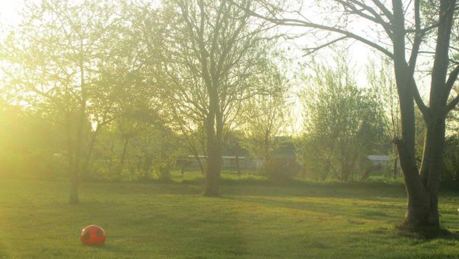 Jardin - Fleur de Sel, Mons