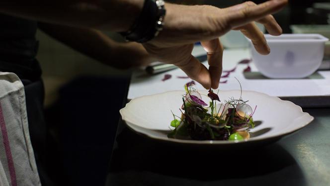 Dressage d'assiette - Cobéa - Philippe Bélissent, Paris