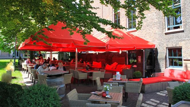 Terras - Pavlov, Den Haag