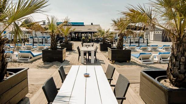 Afbeeldingsresultaat voor beachclub royal