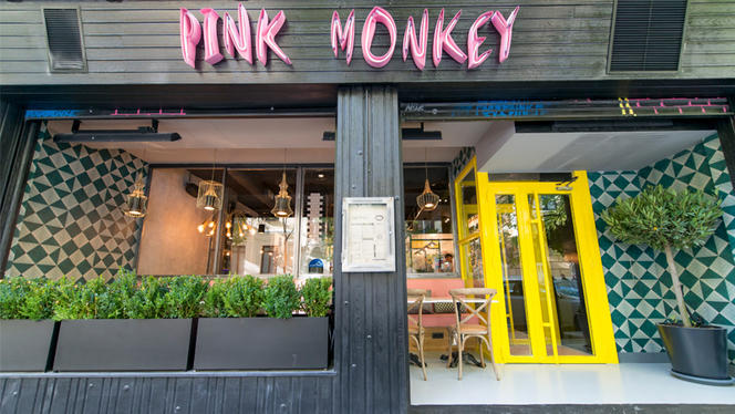 Pink Monkey 10 - Pink Monkey, Madrid