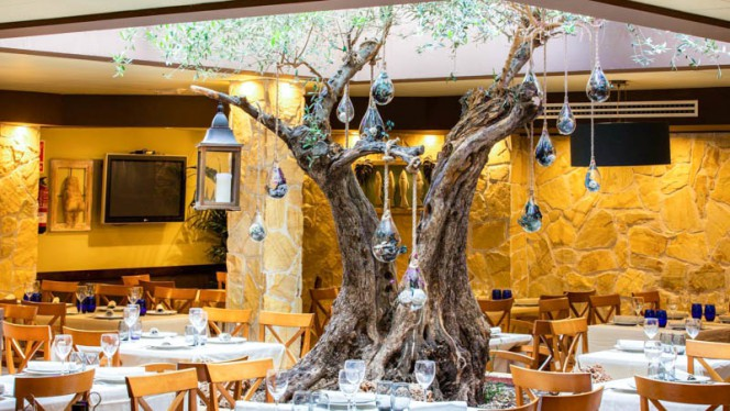 Vista del interior - El olivo, Calafell