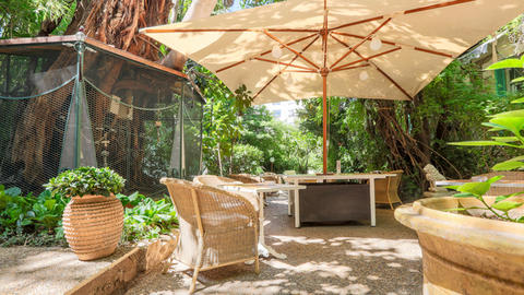 Wi Jungle - Hotel WindsoR, Nice