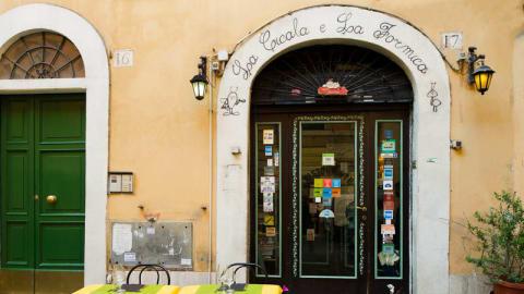 La Cicala e la Formica, Rome