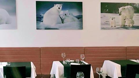 Orso Bianco Giassai, Lissone