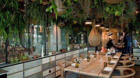 Restaurant M.e. (Mother earth), Amsterdam