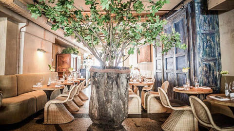 Ashoka Restaurant - Amsterdam Centrum, Amsterdam